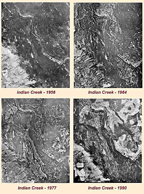 Indian Creek clearcut logging - 1998