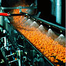 Smith Foods Carrot Processing