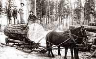 Winter Horse Logging