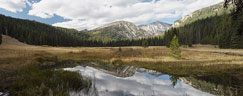 West Eagle Meadow - Wallowa Whitman NF